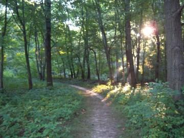 path September 2013 007